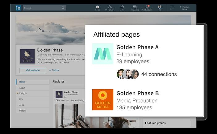 linkedin showcase pages example