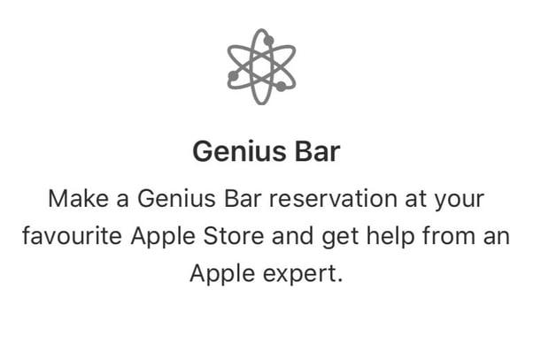 apple geniuses