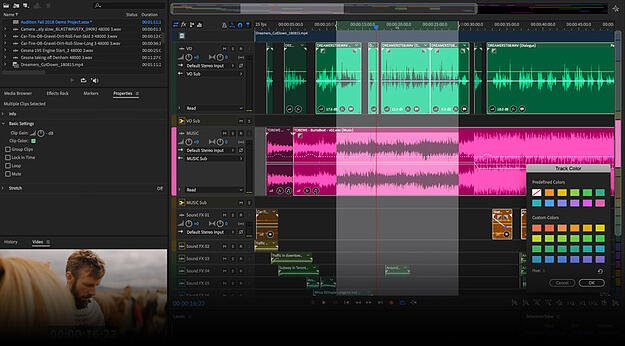 adobe audition for business